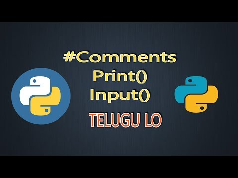 comments,Input,print- python tutorials in Telugu - Sri Vidhya thumbnail