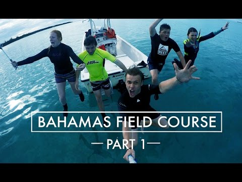Bahamas Field Course Part 1