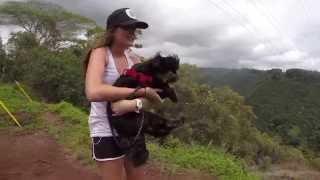 Bella Goes Hiking Thumbnail