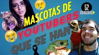 MASCOTAS DE YOUTUBERS QUE YA NO ESTÁN CON NOSOTROS :(