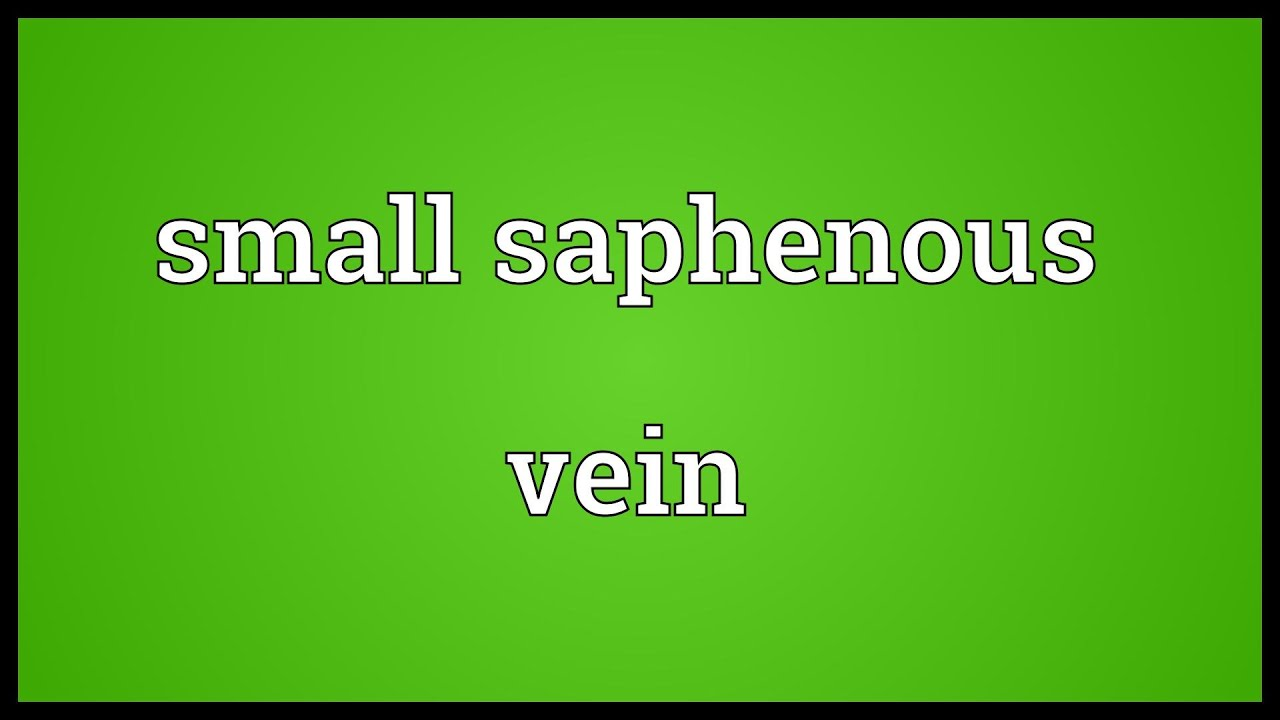 Small Saphenous Vein Meaning Youtube