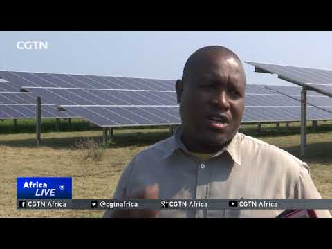 Kruger National Park turns to solar power to cut carbon footprint