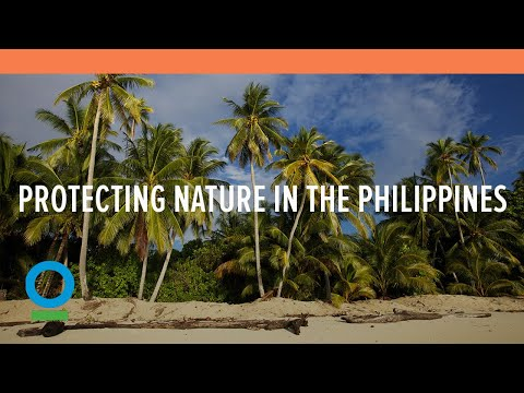 Toyota and Conservation International to Protect Nature in the Philippines