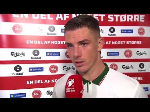 Denmark v Republic of Ireland - post-match interview - Ciaran Clark (11/11/17)