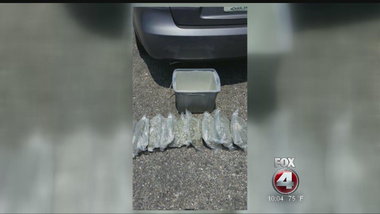 Marijuana found at PG post office