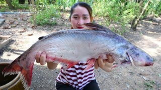 Yummy Pangasius Fish Fry Ginger Cooking Soybean Past - Fish Cooking - Cooking With Sros