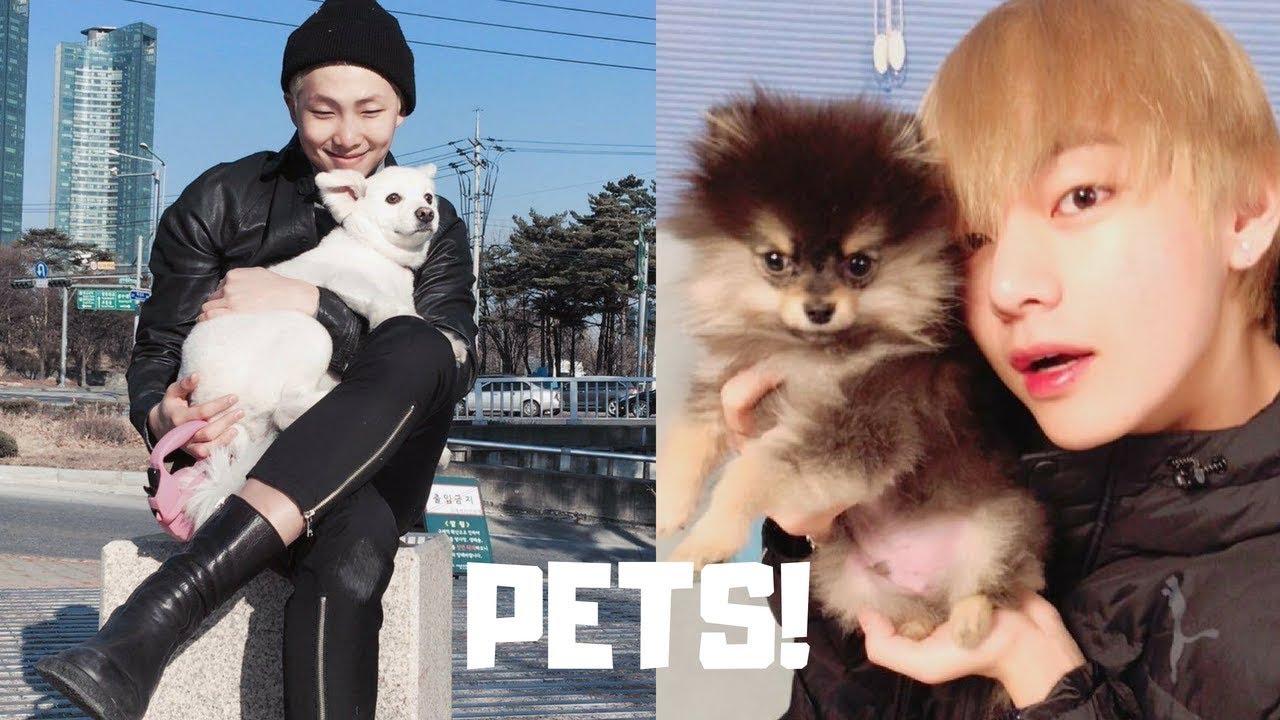 Bts Pets