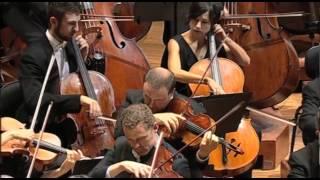 BEETHOVEN Symphony No. 9: Ode To Joy Excerpt 1 (Sydney Symphony Orchestra / Ashkenazy)