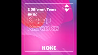 2 Different Tears : Originally Performed By 원더걸스 Karaoke Ver…