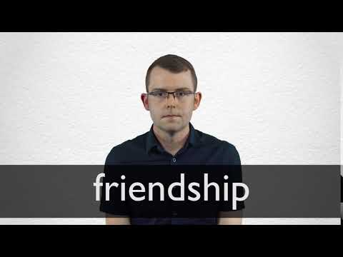 Friendship definition and meaning | Collins English Dictionary