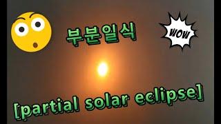 [주주남매TV] 부분 일식!  partial solar…