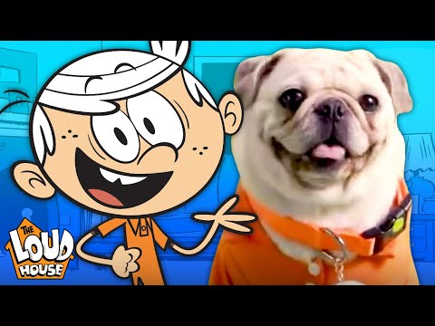 The Pugs & Louds Team Up for an Opening Theme Song 🎵 | The Loud House | Nick