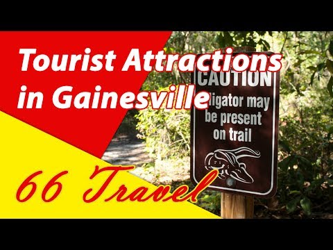 List 18 Tourist Attractions in Gainesville, Florida | Travel to United States