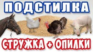 Прибыльная тема / Стружка и опилки для подстилки / ПОДСТИЛКА для животных