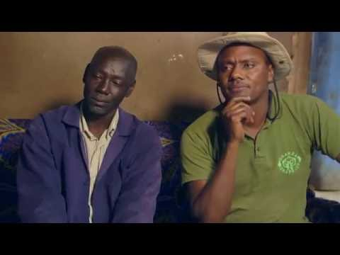 Shamba Shape Up Sn 06 - Ep 18 Tomatoes, Potatoes, Kenbro Chicken (Swahili)