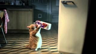 Yoki commercial Kat 2013
