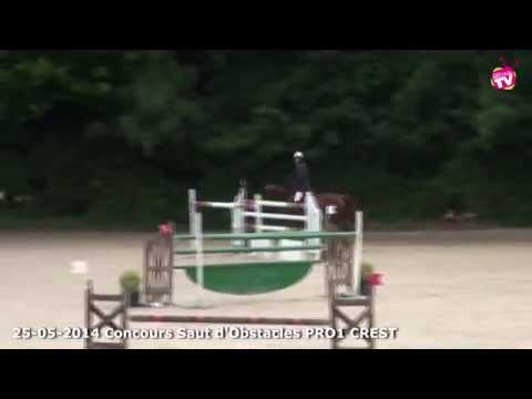 Grand Régional Concours Saut d'Obstacles