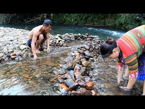 Primitive life: Chasing catch fish by hand in the river and grilled fish - Eating delicious