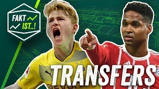 De Ligt zu Dortmund, Wendell zum FC Bayern? Fakt ist..! Transfer Spezial Sommerpause 2018