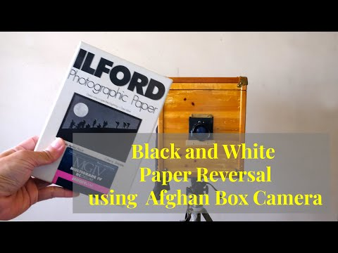 black-and-white-paper-reversal-with-afghan-box-camera