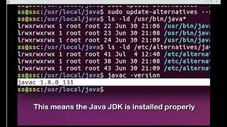 Java JDK Install for SDRTrunk on Ubuntu Linux