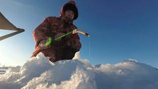 Зимняя рыбалка Татарстан река Меша