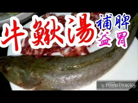 滋潤湯水😋牛鰍魚👍 補脾益胃