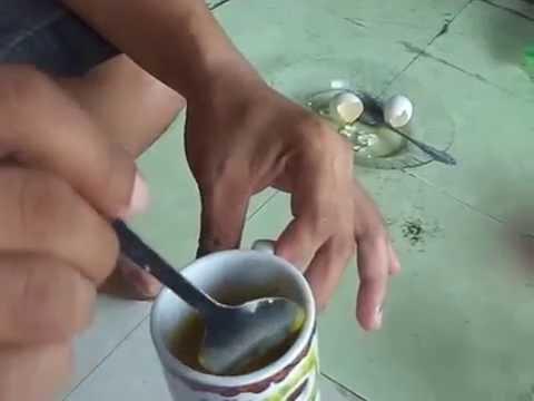 Makan Telur Ayam Kampung Plus Madu Youtube