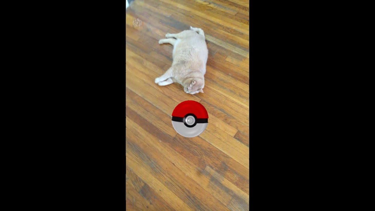 Youtube Cat Eye Tutorial: CAT POKEMON GO