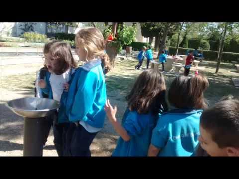 Excursi n a la escuela de jardiner a el pinar youtube for Escuela de jardineria