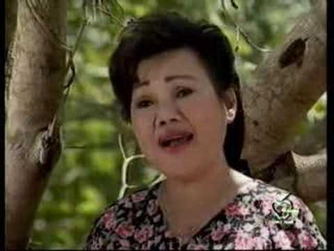Cai Luong Hai Chang Lua