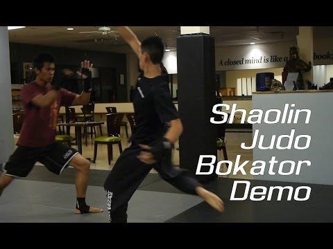 Judo / Shaolin / Bokator Demo