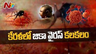 కేరళలో జికా  వైరస్ కలకలం | Kerala Reports First Zika Virus Case | NTV