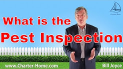 What is a pest inspection when buying a house?