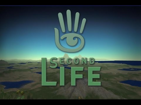 The first hour of Second Life!