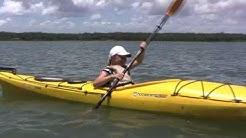 Kayak Trip - Kayak Amelia