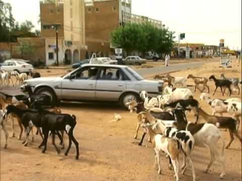Senegal: Beyond Tradition