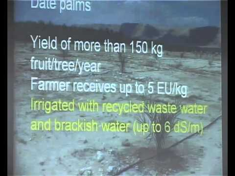 Climate Change Conference -  Israel Dry Land Farming Crops