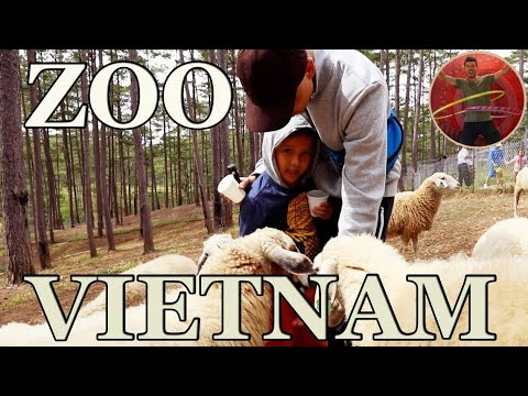 CHILDREN PLAYING AT THE ZOO IN VIETNAM - Ep 97