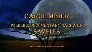 Wildlife Documentary Narrator Samples - Female Narrator