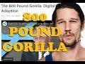 The 800 Pound Gorilla: Digital Asset Adoption - Ripple &  TAS