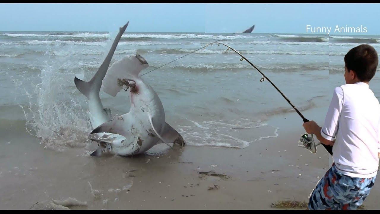 Net fishing cast nets fishing big catch fish fresh water for Big fishing net