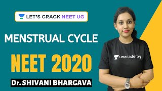 Menstrual Cycle | Success Booster Series for NEET 2020 | Target NEET 2020