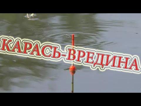 КАРАСЬ-ВРЕДИНА на кукурузу,перловку,сибирского червя в конце июня 2017