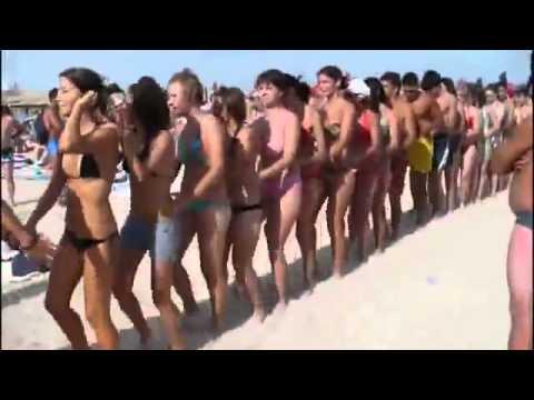 Penguin Dance on the Beach