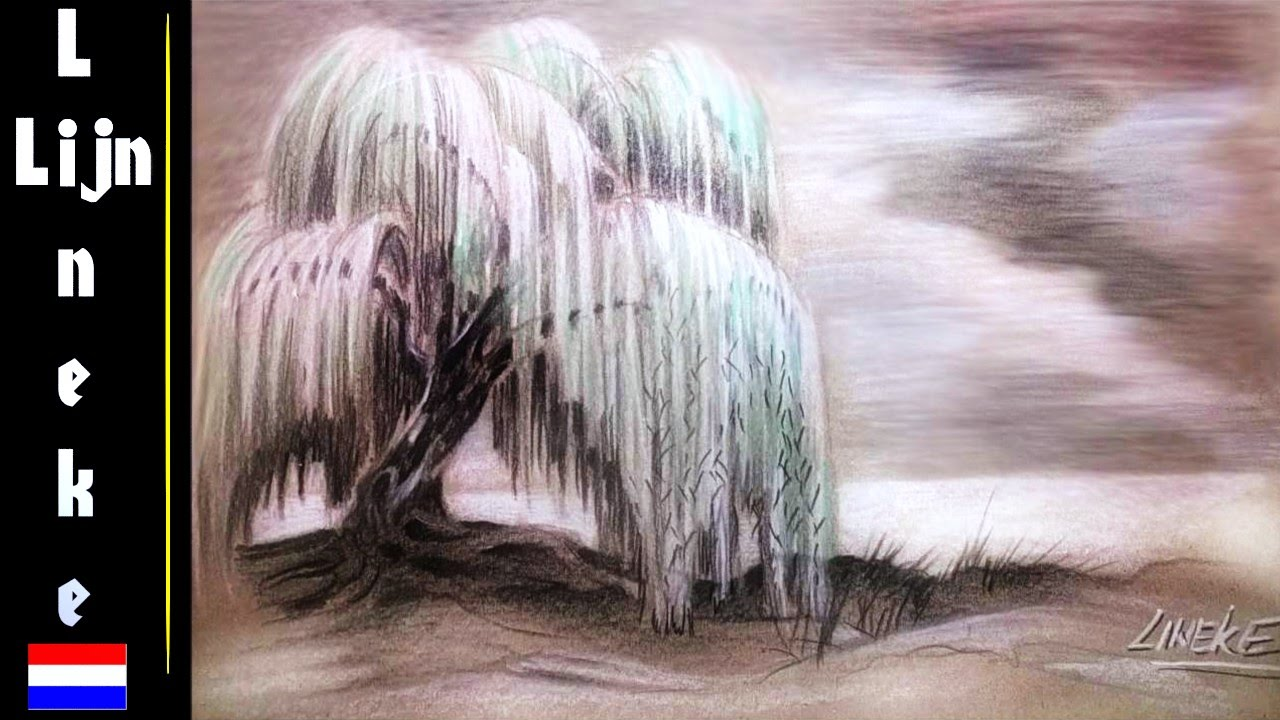Boom tekenen treurwilg sprookjes boom bij zonsondergang youtube - Hoe een boom te verlichten ...
