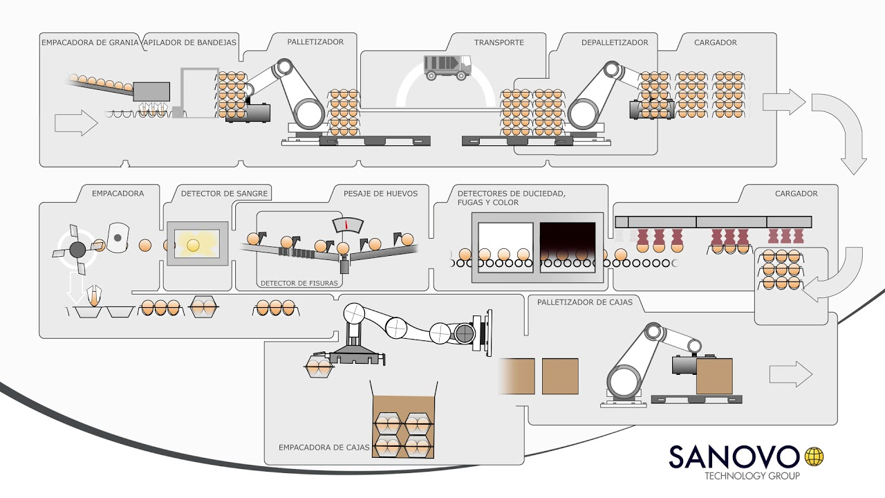 Diagrama de flujo clasificacin y empaque de huevos youtube diagrama de flujo clasificacin y empaque de huevos ccuart Gallery