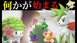 【ポケモンGO】実装準備!?幻のポケモンのシェイミやフォルムの変わるポケモンが続々とデータ追加!【Pokémon GO】