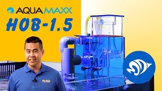 AquaMaxx HOB 1.5: How to Assemble, Prime the Pump, and Clean Your Protein Skimmer