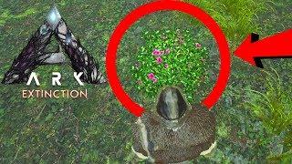 WAT ZIT ER IN DEZE NIEUWE PLANT?! - ARK Extinction #8